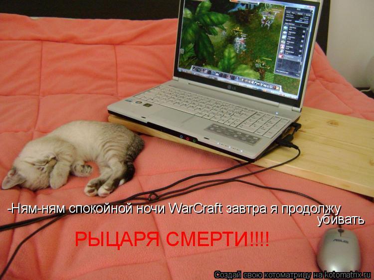 Котоматрица: -Ням-ням спокойной ночи WarCraft завтра я продолжу убивать РЫЦАРЯ СМЕРТИ!!!!