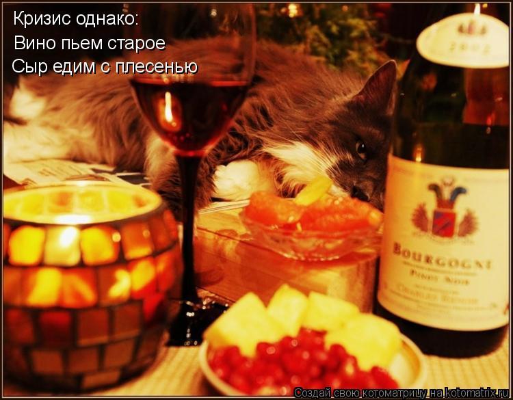 Котоматрица: Кризис однако: Вино пьем старое Сыр едим с плесенью
