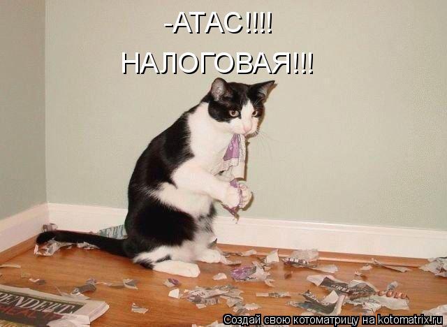 Котоматрица: -АТАС!!!!  НАЛОГОВАЯ!!!