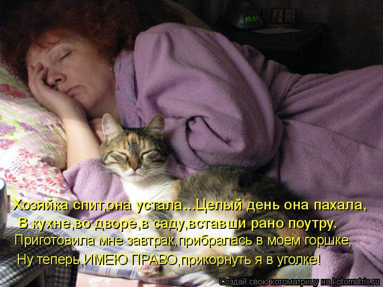 Котоматрица: Хозяйка спит,она устала...Целый день она пахала, В кухне,во дворе,в саду,вставши рано поутру. Приготовила мне завтрак,прибралась в моем горшк