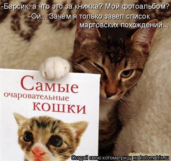 Котоматрица: -Барсик, а что это за книжка? Мой фотоальбом? -Ой... Зачем я только завел список мартовских похождений...