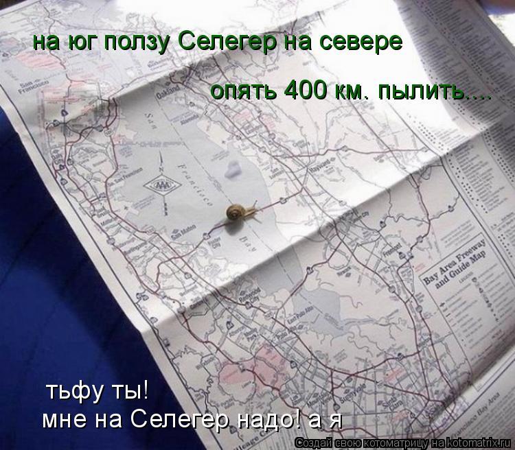 Котоматрица: тьфу ты! мне на Селегер надо! а я на юг ползу Селегер на севере опять 400 км. пылить....