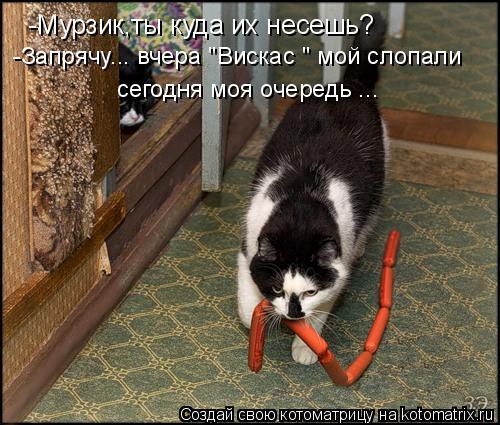 """Котоматрица: -Мурзик,ты куда их несешь? -Запрячу... вчера """"Вискас """" мой слопали сегодня моя очередь ..."""