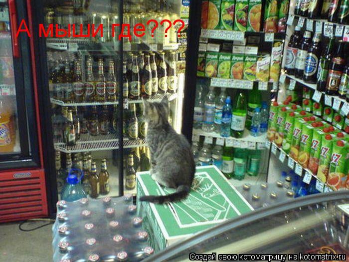 Котоматрица: А мыши где???