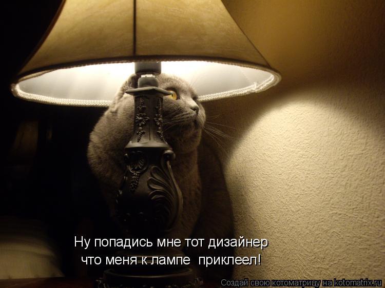 Котоматрица: Ну попадись мне тот дизайнер  что меня к лампе  приклеел!