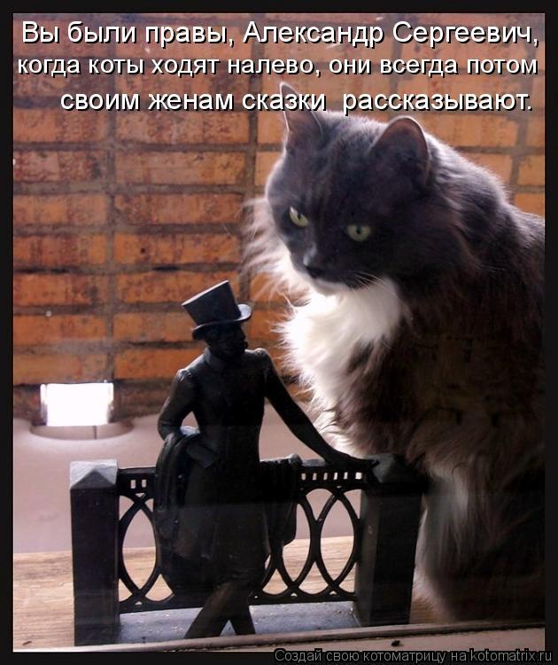 Котоматрица: Вы были правы, Александр Сергеевич, когда коты ходят налево, они всегда потом своим женам сказки  рассказывают.