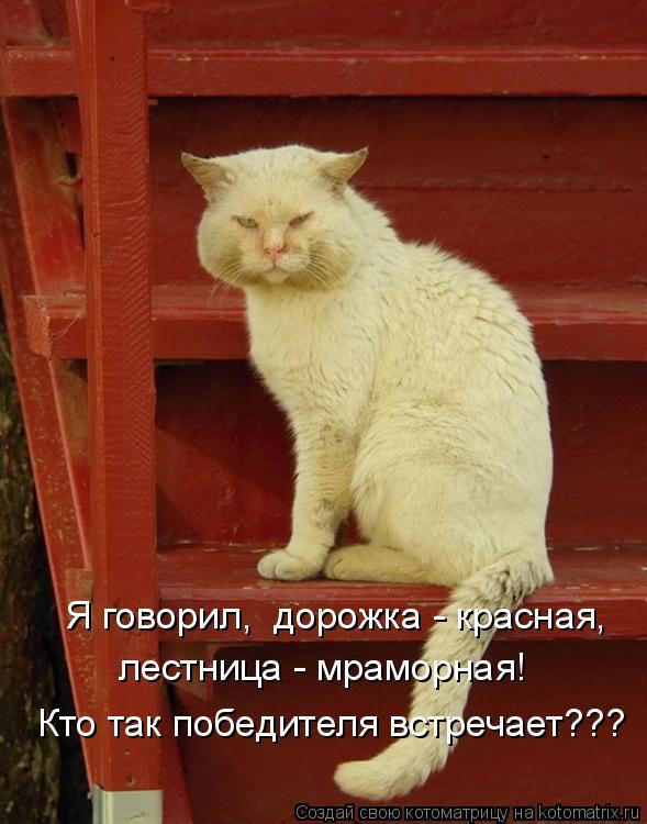 Котоматрица: Я говорил,  дорожка - красная,  лестница - мраморная!  Кто так победителя встречает???