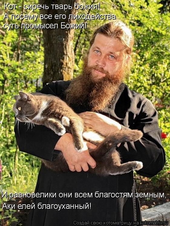 Котоматрица: Кот - сиречь тварь божия! А посему все его лиходейства суть промысел Божий! И равновелики они всем благостям земным, Аки елей благоуханный!