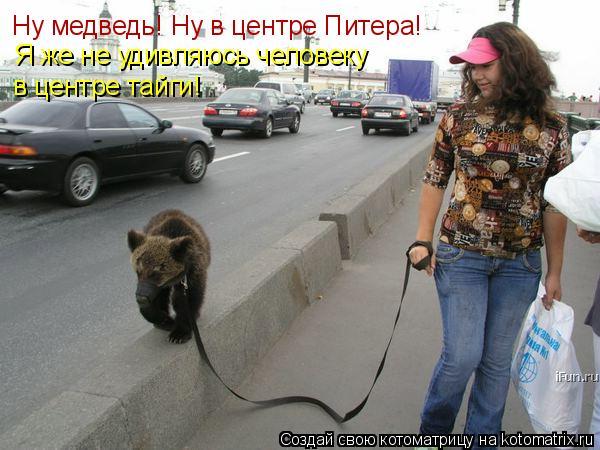 Котоматрица: Ну медведь! Ну в центре Питера! в центре тайги! Я же не удивляюсь человеку