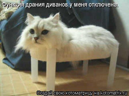 Котоматрица: Функция драния диванов у меня отключена.