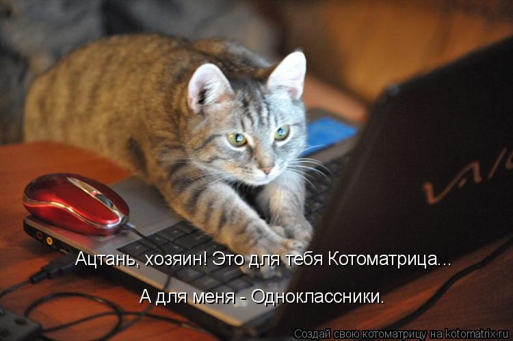 http://kotomatrix.ru/images/lolz/2009/09/22/363100.jpg