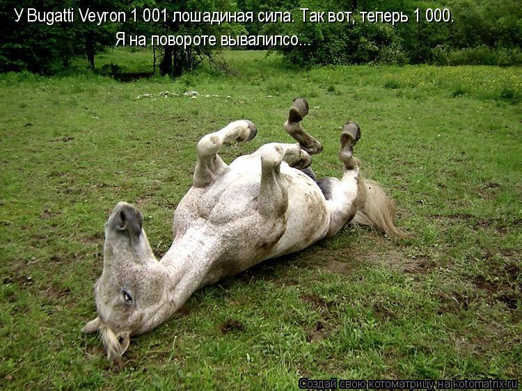 Котоматрица: У Bugatti Veyron 1 001 лошадиная сила. Так вот, теперь 1 000. Я на повороте вывалилсо...