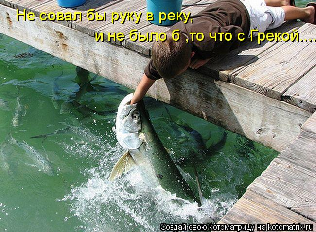 Котоматрица: Не совал бы руку в реку, и не было б ,то что с Грекой....