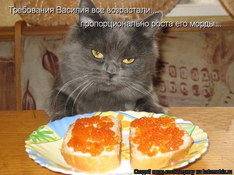 Котоматрица: Требования Василия все возрастали.... пропорционально роста его морды...