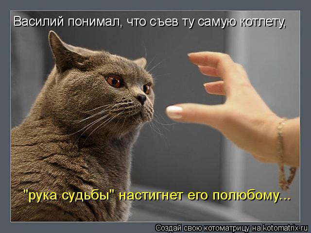 """Котоматрица: Василий понимал, что съев ту самую котлету, """"рука судьбы"""" настигнет его полюбому..."""