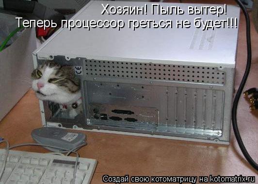 Котоматрица: Хозяин! Пыль вытер! Теперь процессор греться не будет!!!
