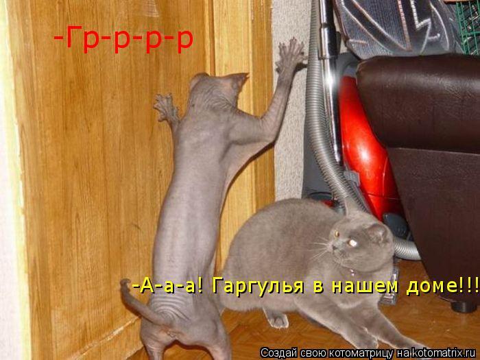 Котоматрица: -Гр-р-р-р -А-а-а! Гаргулья в нашем доме!!!! -А-а-а! Гаргулья в нашем доме!!!!