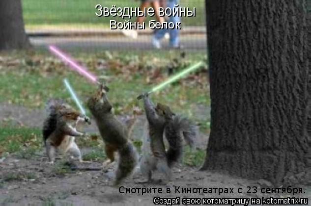 Котоматрица: Звёздные войны Войны белок Смотрите в Кинотеатрах с 23 сентября.