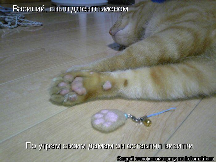 Котоматрица: Василий, слыл джентльменом По утрам своим дамам он оставлял визитки