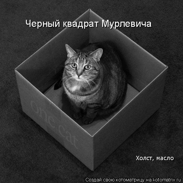 Котоматрица: Черный квадрат Мурлевича Холст, масло