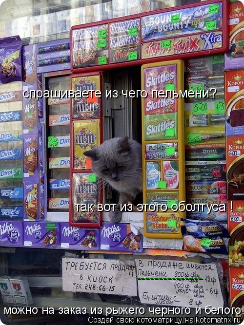 Котоматрица: --------------- спрашиваете из чего пельмени? так вот из этого оболтуса ! можно на заказ из рыжего черного и белого!