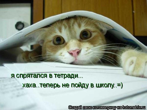 Котоматрица: я спрятался в тетради... хаха..теперь не пойду в школу..=)