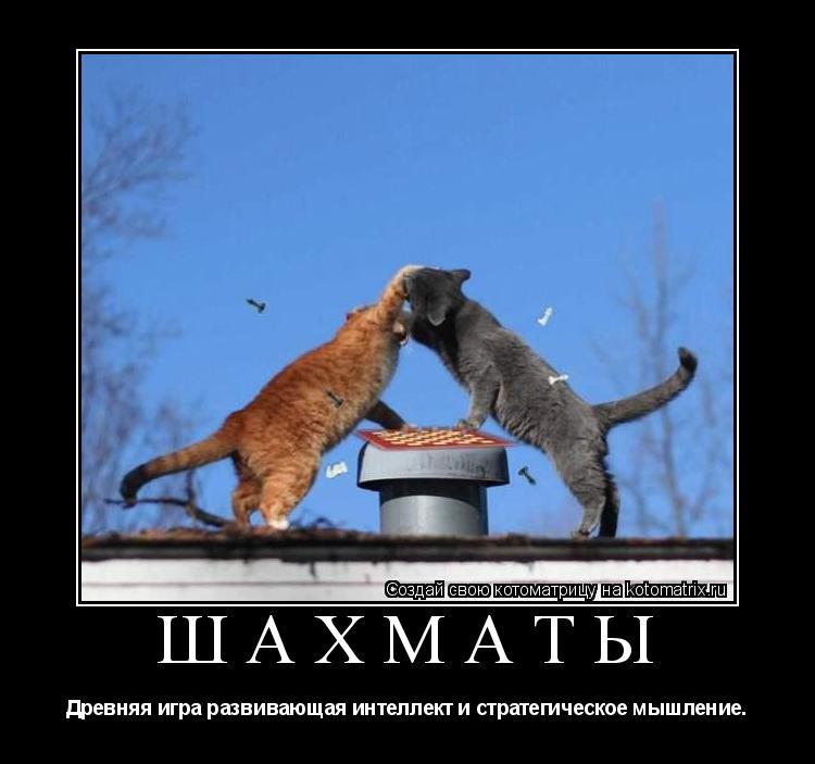 http://kotomatrix.ru/images/lolz/2009/09/22/N.jpg