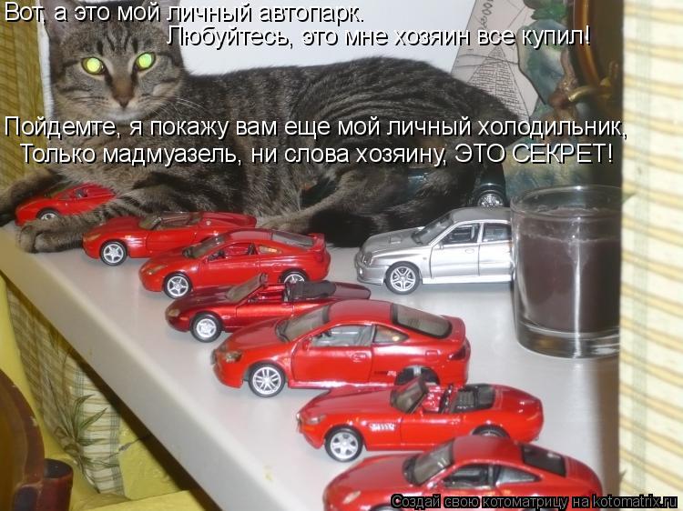 Котоматрица: Вот, а это мой личный автопарк.  Любуйтесь, это мне хозяин все купил! Пойдемте, я покажу вам еще мой личный холодильник, Только мадмуазель, ни