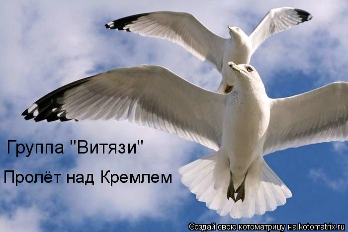 "Котоматрица: Группа ""Витязи""  Пролёт над Кремлем"