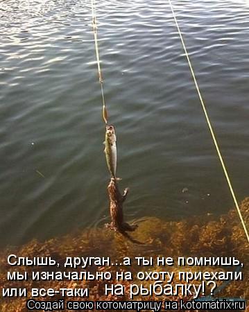 Котоматрица: Слышь, друган...а ты не помнишь,  или все-таки  на рыбалку!? мы изначально на охоту приехали