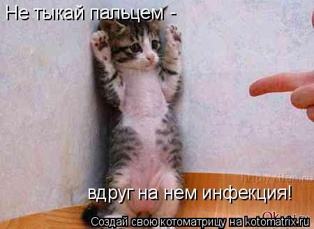 Котоматрица: Не тыкай пальцем вдруг на нем инфекция! -