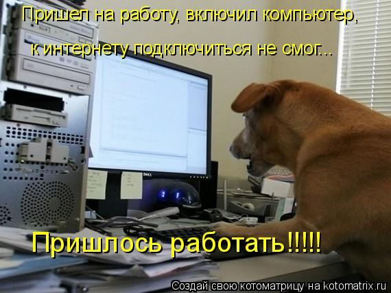 Котоматрица: Пришел на работу, включил компьютер, к интернету подключиться не смог...  Пришлось работать!!!!!