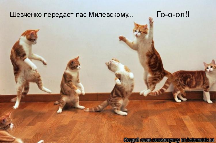 Котоматрица: Шевченко передает пас Милевскому... Го-о-ол!!