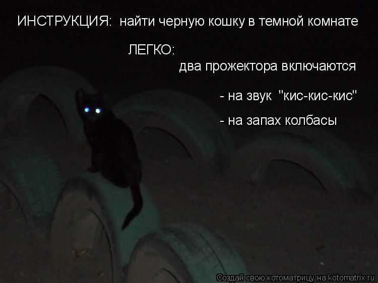 """Котоматрица: ЛЕГКО:  два прожектора включаются - на звук  """"кис-кис-кис"""" - на запах колбасы   ИНСТРУКЦИЯ:  найти черную кошку в темной комнате"""