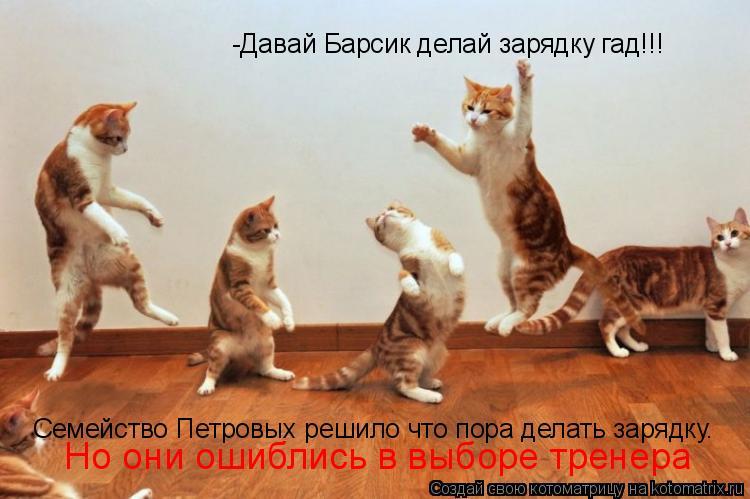 Котоматрица: -Давай Барсик делай зарядку гад!!! Семейство Петровых решило что пора делать зарядку. Но они ошиблись в выборе тренера