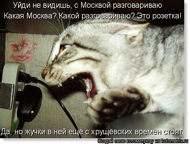 Котоматрица: Уйди не видишь, с Москвой разговариваю Какая Москва? Какой разговариваю? Это розетка! Да, но жучки в ней ещё с хрущёвских времён стоят