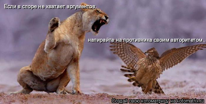 Котоматрица: Если в споре не хватает аргументов, напирайте на противника своим авторитетом..