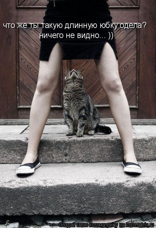 Котоматрица: что же ты такую длинную юбку одела? ничего не видно... ))