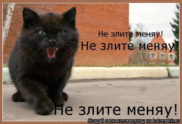 Котоматрица: Не злите меняу! Не злите меняу! Не злите меняу!