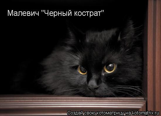 """Котоматрица: Малевич """"Черный кострат"""""""