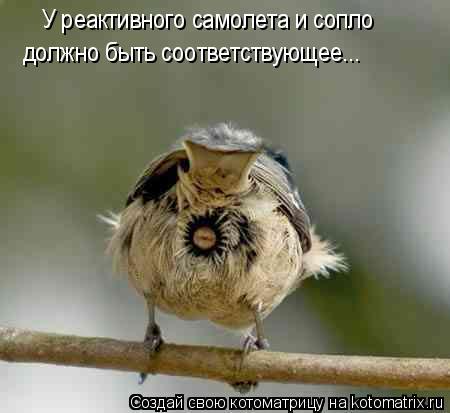 Котоматрица: У реактивного самолета и сопло должно быть соответствующее...