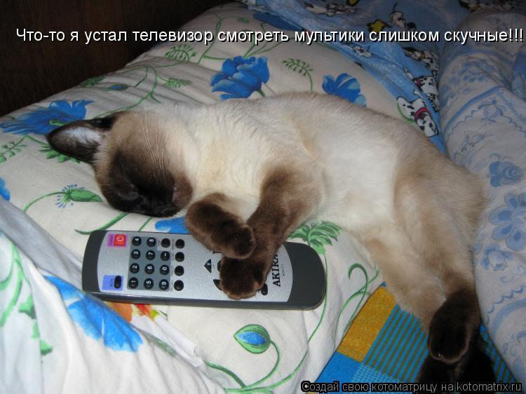 Котоматрица: Что-то я устал телевизор смотреть мультики слишком скучные!!!