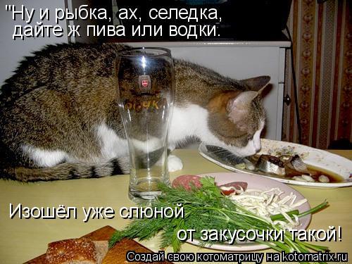 "Котоматрица: ""Ну и рыбка, ах, селедка, дайте ж пива или водки. Изошёл уже слюной от закусочки такой! от закусочки такой!"