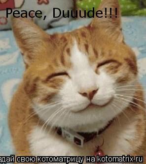 Котоматрица: Peace, Duuude!!!