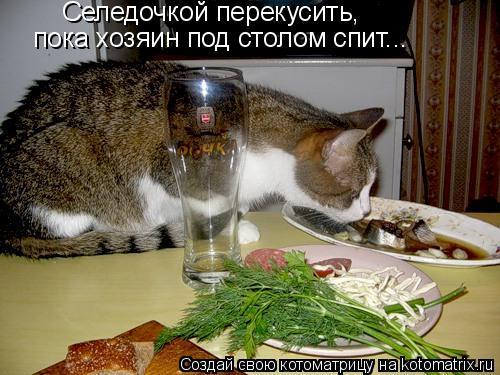 Котоматрица: Селедочкой перекусить, пока хозяин под столом спит...