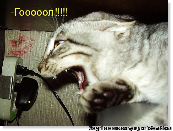 Котоматрица: -Гооооол!!!!!