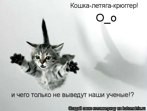 Котоматрица: Кошка-летяга-крюггер! и чего только не выведут наши ученые!? О_о