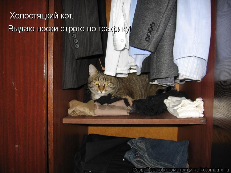 Котоматрица: Холостяцкий кот. Выдаю носки строго по графику!
