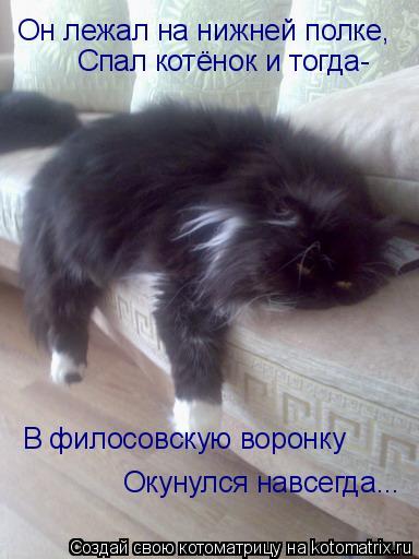 Котоматрица: Он лежал на нижней полке, Он лежал на нижней полке, Спал котёнок и тогда- В филосовскую воронку Окунулся навсегда...