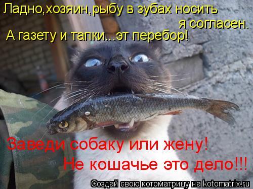 Котоматрица: я согласен. Ладно,хозяин,рыбу в зубах носить Заведи собаку или жену! Не кошачье это дело!!! А газету и тапки...эт перебор!